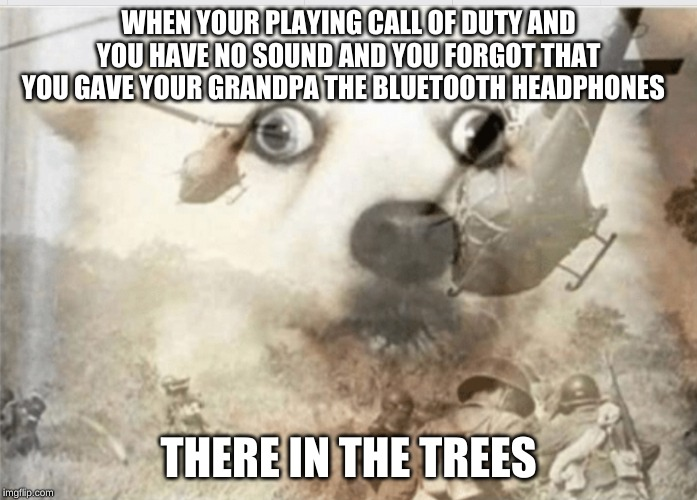 PTSD dog | WHEN YOUR PLAYING CALL OF DUTY AND YOU HAVE NO SOUND AND YOU FORGOT THAT YOU GAVE YOUR GRANDPA THE BLUETOOTH HEADPHONES THERE IN THE TREES | image tagged in ptsd dog | made w/ Imgflip meme maker