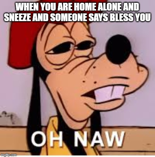 oh nawwww | WHEN YOU ARE HOME ALONE AND SNEEZE AND SOMEONE SAYS BLESS YOU | image tagged in goofy,lol,relatable,true,disney,funny | made w/ Imgflip meme maker