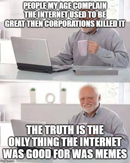 The truth about the internet |  PEOPLE MY AGE COMPLAIN THE INTERNET USED TO BE GREAT THEN CORPORATIONS KILLED IT; THE TRUTH IS THE ONLY THING THE INTERNET WAS GOOD FOR WAS MEMES | image tagged in memes,hide the pain harold | made w/ Imgflip meme maker