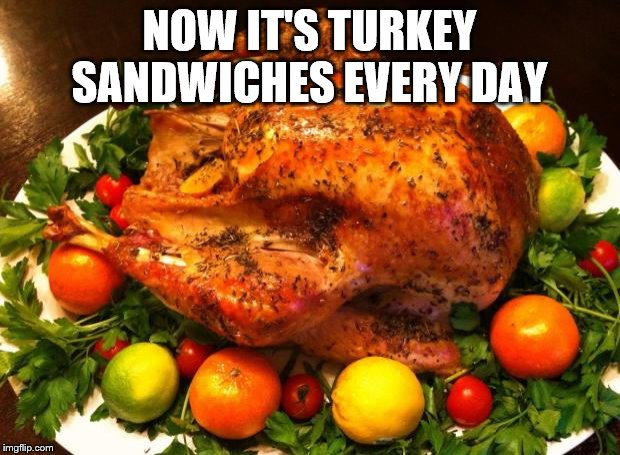 Roasted turkey | NOW IT'S TURKEY SANDWICHES EVERY DAY | image tagged in roasted turkey | made w/ Imgflip meme maker