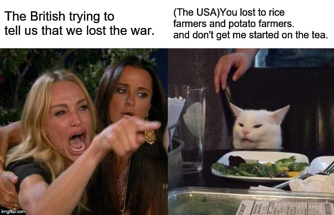 Woman Yelling At Cat Meme | The British trying to tell us that we lost the war. (The USA)You lost to rice farmers and potato farmers. and don't get me started on the te | image tagged in memes,woman yelling at cat | made w/ Imgflip meme maker