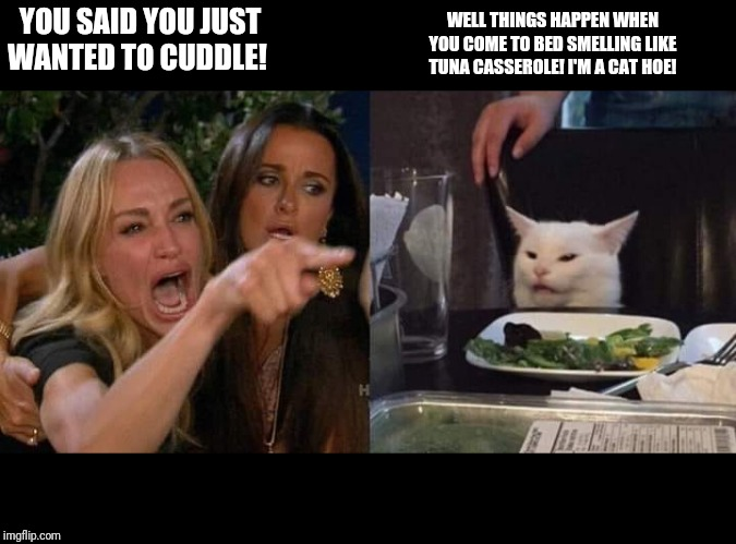 Crying lady and cat | YOU SAID YOU JUST WANTED TO CUDDLE! WELL THINGS HAPPEN WHEN YOU COME TO BED SMELLING LIKE TUNA CASSEROLE! I'M A CAT HOE! | image tagged in crying lady and cat | made w/ Imgflip meme maker