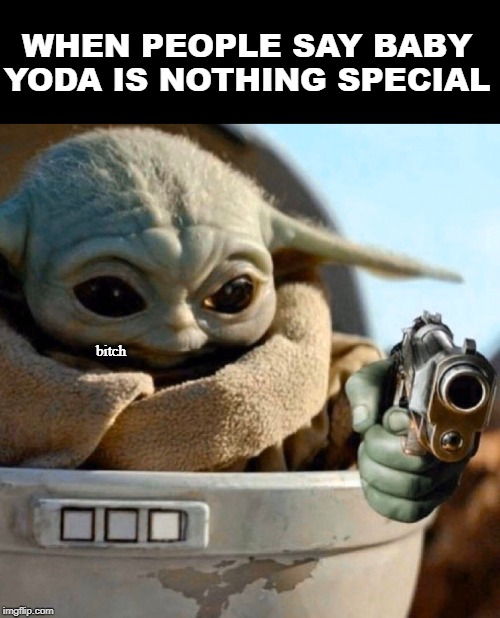 Don't mess with Baby Yoda! | WHEN PEOPLE SAY BABY YODA IS NOTHING SPECIAL b**ch | image tagged in star wars,memes,baby yoda,funny,the mandalorian | made w/ Imgflip meme maker