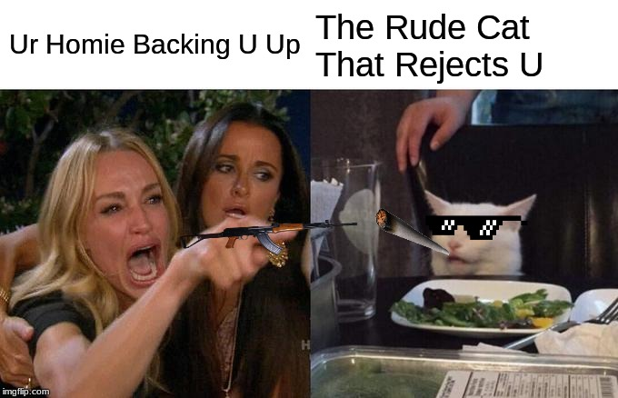 Woman Yelling At Cat Meme | Ur Homie Backing U Up The Rude Cat That Rejects U | image tagged in memes,woman yelling at cat | made w/ Imgflip meme maker