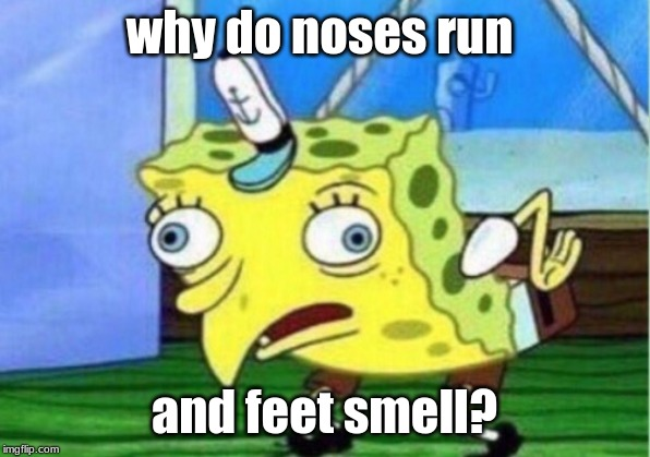Mocking Spongebob Meme | why do noses run and feet smell? | image tagged in memes,mocking spongebob | made w/ Imgflip meme maker