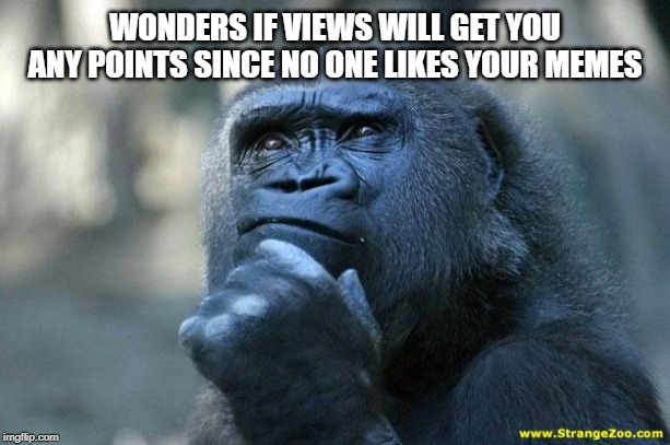Deep Thoughts | WONDERS IF VIEWS WILL GET YOU ANY POINTS SINCE NO ONE LIKES YOUR MEMES | image tagged in deep thoughts | made w/ Imgflip meme maker