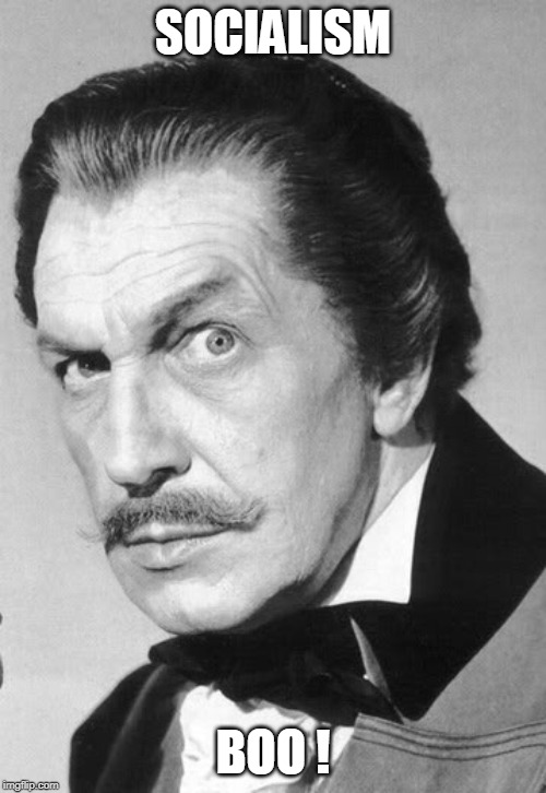 Vincent Price | SOCIALISM BOO ! | image tagged in vincent price | made w/ Imgflip meme maker