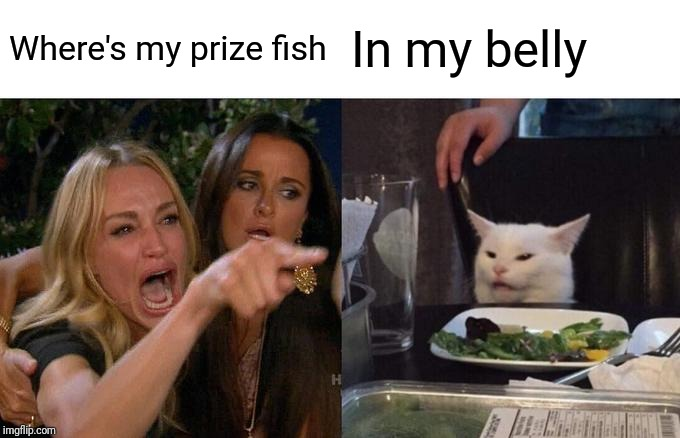 Woman Yelling At Cat Meme | Where's my prize fish In my belly | image tagged in memes,woman yelling at cat | made w/ Imgflip meme maker