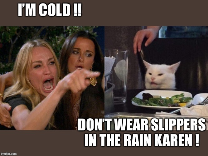 Woman yelling at cat | I'M COLD !! DON'T WEAR SLIPPERS IN THE RAIN KAREN ! | image tagged in woman yelling at cat | made w/ Imgflip meme maker