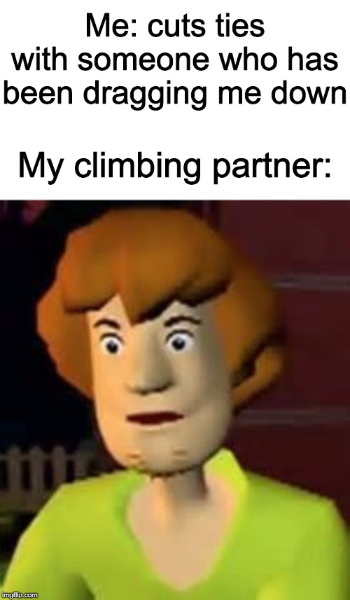 Up√0†ing ge†5 ¥0u p0in†5! | Me: cuts ties with someone who has been dragging me down My climbing partner: | image tagged in surprised shaggy,funny,memes | made w/ Imgflip meme maker