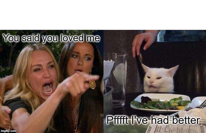 Woman Yelling At Cat Meme | You said you loved me Pfffft I've had better | image tagged in memes,woman yelling at cat | made w/ Imgflip meme maker