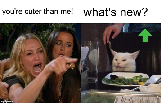 Woman Yelling At Cat Meme | you're cuter than me! what's new? | image tagged in memes,woman yelling at cat | made w/ Imgflip meme maker