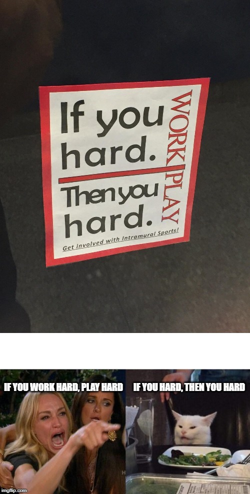 IF YOU HARD, THEN YOU HARD IF YOU WORK HARD, PLAY HARD | image tagged in memes,woman yelling at cat | made w/ Imgflip meme maker