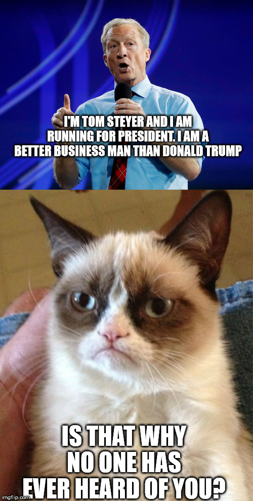 Tom Steyer Grumpy Cat | I'M TOM STEYER AND I AM RUNNING FOR PRESIDENT. I AM A BETTER BUSINESS MAN THAN DONALD TRUMP IS THAT WHY NO ONE HAS EVER HEARD OF YOU? | image tagged in memes,grumpy cat,tom steyer | made w/ Imgflip meme maker