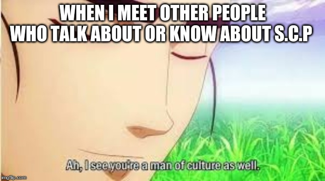 Ah,I see you are a man of culture as well | WHEN I MEET OTHER PEOPLE WHO TALK ABOUT OR KNOW ABOUT S.C.P | image tagged in ah i see you are a man of culture as well | made w/ Imgflip meme maker