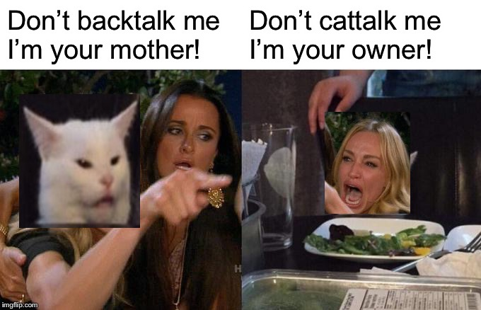 Woman Yelling At Cat Meme | Don't backtalk meI'm your mother! Don't cattalk meI'm your owner! | image tagged in memes,woman yelling at cat | made w/ Imgflip meme maker