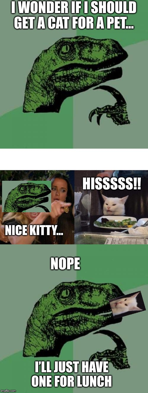 I WONDER IF I SHOULD GET A CAT FOR A PET... HISSSSS!! NOPE NICE KITTY... I'LL JUST HAVE ONE FOR LUNCH | image tagged in memes,philosoraptor,woman yelling at cat | made w/ Imgflip meme maker
