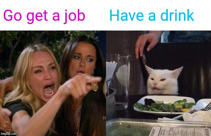 Woman Yelling At Cat | Go get a job Have a drink | image tagged in memes,woman yelling at cat | made w/ Imgflip meme maker