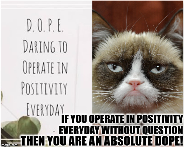 IF YOU OPERATE IN POSITIVITY EVERYDAY WITHOUT QUESTION THEN YOU ARE AN ABSOLUTE DOPE! | image tagged in dope | made w/ Imgflip meme maker