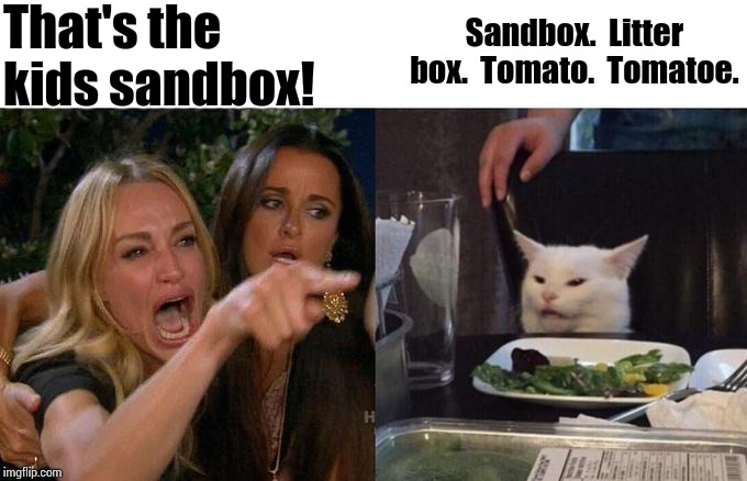 Same Difference | That's the kids sandbox! Sandbox.  Litter box.  Tomato.  Tomatoe. | image tagged in memes,woman yelling at cat,sand,litter box,kids playing,funny cat memes | made w/ Imgflip meme maker