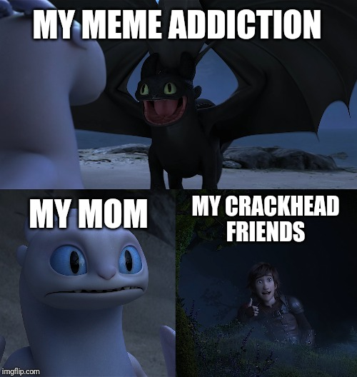 My raging meme addiction. |  MY MEME ADDICTION; MY MOM; MY CRACKHEAD FRIENDS | image tagged in httyd,crackhead,memes,meme addict,toothless,toothless presents himself | made w/ Imgflip meme maker