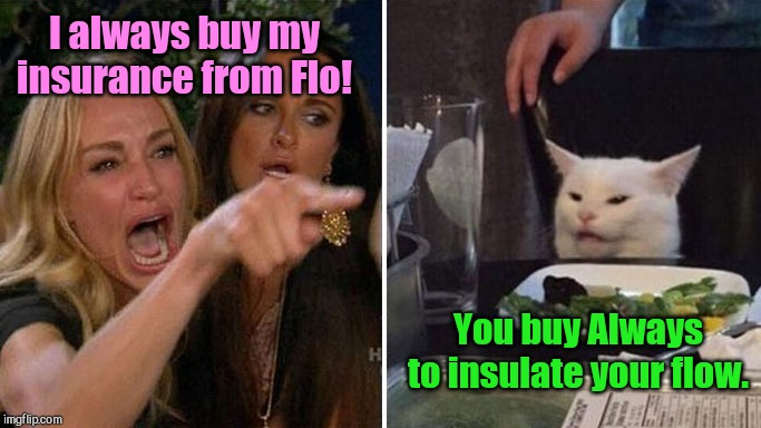 Flo vs Flow | I always buy my insurance from Flo! You buy Always to insulate your flow. | image tagged in angry lady cat,women,humor | made w/ Imgflip meme maker
