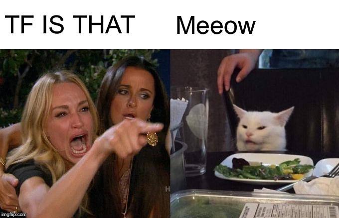 Woman Yelling At Cat | TF IS THAT Meeow | image tagged in memes,woman yelling at cat | made w/ Imgflip meme maker