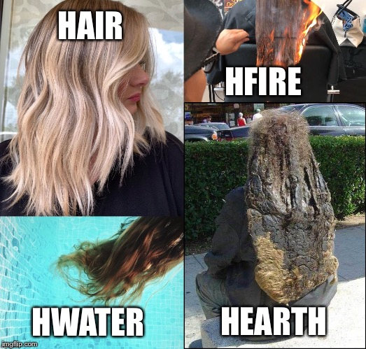 The elements |  HAIR; HFIRE; HEARTH; HWATER | image tagged in funny | made w/ Imgflip meme maker