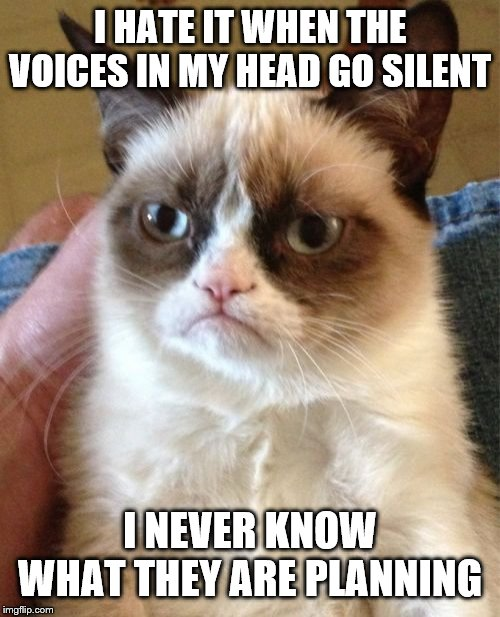 Grumpy Cat | I HATE IT WHEN THE VOICES IN MY HEAD GO SILENT I NEVER KNOW WHAT THEY ARE PLANNING | image tagged in memes,grumpy cat | made w/ Imgflip meme maker