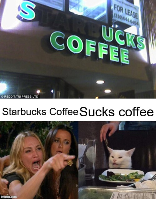 Sucks coffee! | Starbucks Coffee Sucks coffee | image tagged in memes,woman yelling at cat,sucks,funny,starbucks | made w/ Imgflip meme maker