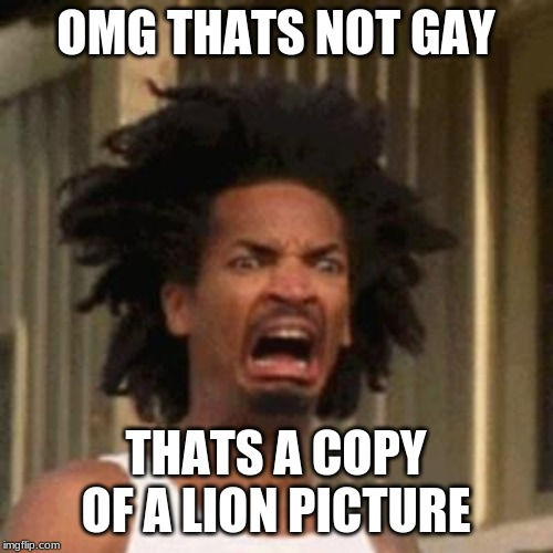 crab man eww | OMG THATS NOT GAY THATS A COPY OF A LION PICTURE | image tagged in crab man eww | made w/ Imgflip meme maker