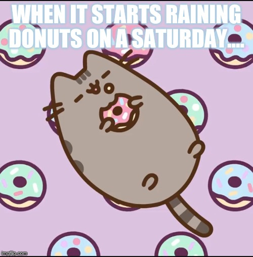 Lazy Pusheen | WHEN IT STARTS RAINING DONUTS ON A SATURDAY.... | image tagged in lazy pusheen | made w/ Imgflip meme maker