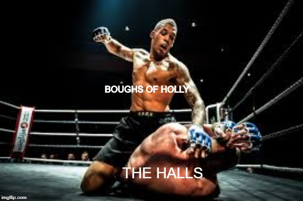 deck the halls with boughs of holly | BOUGHS OF HOLLY THE HALLS | image tagged in christmas,fight,funny | made w/ Imgflip meme maker