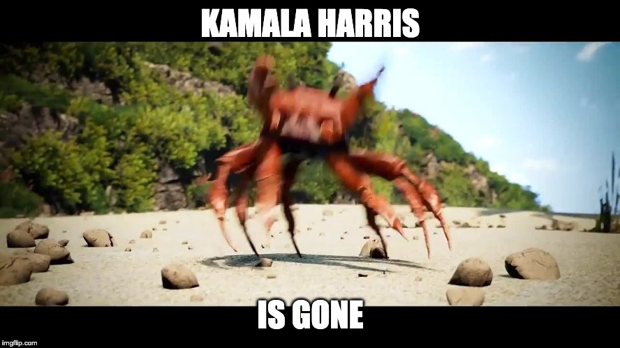 i know i should probably get a gif of this but i'm too lazy | KAMALA HARRIS IS GONE | image tagged in crabrave | made w/ Imgflip meme maker