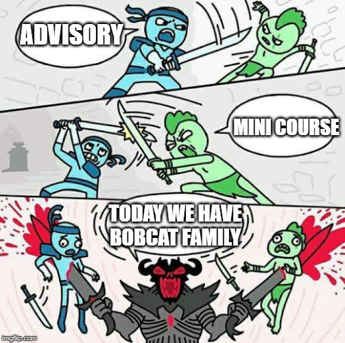 Sword fight |  ADVISORY; MINI COURSE; TODAY WE HAVE BOBCAT FAMILY | image tagged in sword fight | made w/ Imgflip meme maker