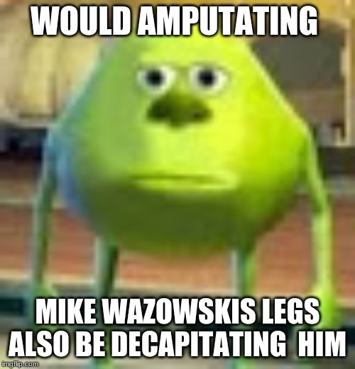 Sully Wazowski | WOULD AMPUTATING MIKE WAZOWSKIS LEGS ALSO BE DECAPITATING  HIM | image tagged in sully wazowski | made w/ Imgflip meme maker