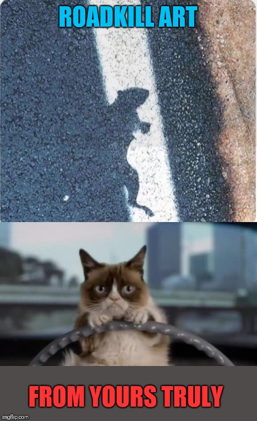 Art by grumpy | ROADKILL ART FROM YOURS TRULY | image tagged in grumpy cat driving,grumpy cat,44colt,driving,construction fail,memes | made w/ Imgflip meme maker