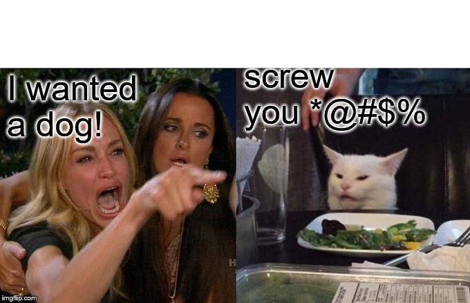 Woman Yelling At Cat Meme | I wanted a dog! screw you *@#$% | image tagged in memes,woman yelling at cat | made w/ Imgflip meme maker