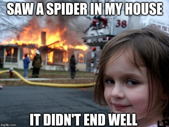 Disaster Girl Meme | SAW A SPIDER IN MY HOUSE IT DIDN'T END WELL | image tagged in memes,disaster girl | made w/ Imgflip meme maker