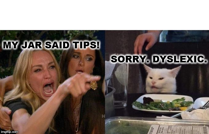 Woman Yelling At Cat Meme | MY JAR SAID TIPS! SORRY. DYSLEXIC. | image tagged in memes,woman yelling at cat | made w/ Imgflip meme maker