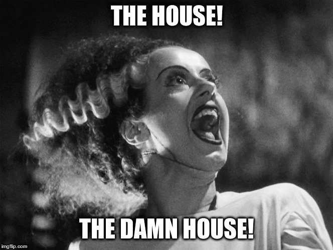 The Bride of Frankenstein | THE HOUSE! THE DAMN HOUSE! | image tagged in the bride of frankenstein | made w/ Imgflip meme maker