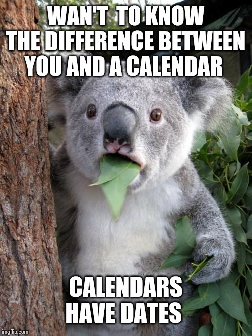 Surprised Koala |  WAN'T  TO KNOW THE DIFFERENCE BETWEEN YOU AND A CALENDAR; CALENDARS HAVE DATES | image tagged in memes,surprised koala | made w/ Imgflip meme maker