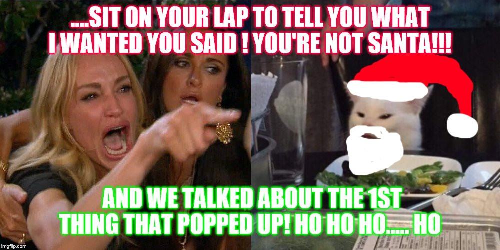 Woman yelling at cat | ....SIT ON YOUR LAP TO TELL YOU WHAT I WANTED YOU SAID ! YOU'RE NOT SANTA!!! AND WE TALKED ABOUT THE 1ST THING THAT POPPED UP! HO HO HO..... | image tagged in woman yelling at cat | made w/ Imgflip meme maker