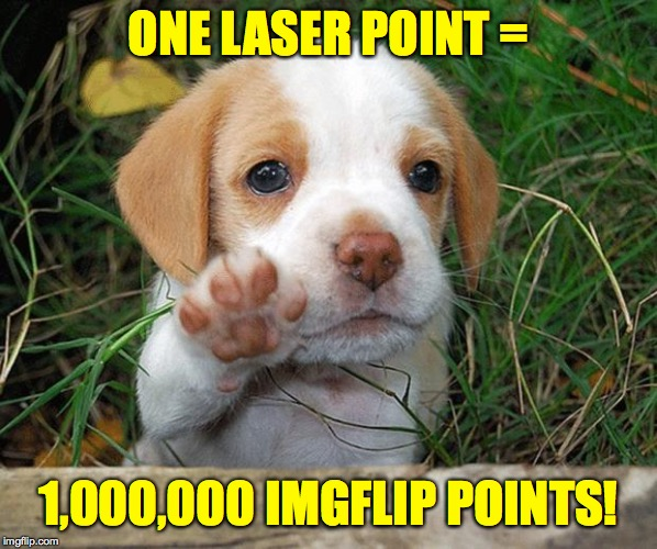 dog puppy bye | ONE LASER POINT = 1,000,000 IMGFLIP POINTS! | image tagged in dog puppy bye | made w/ Imgflip meme maker
