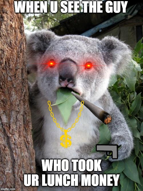 Surprised Koala |  WHEN U SEE THE GUY; WHO TOOK UR LUNCH MONEY | image tagged in memes,surprised koala | made w/ Imgflip meme maker
