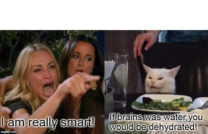 Woman Yelling At Cat Meme | I am really smart! If brains was water,you would be dehydrated! | image tagged in memes,woman yelling at cat | made w/ Imgflip meme maker