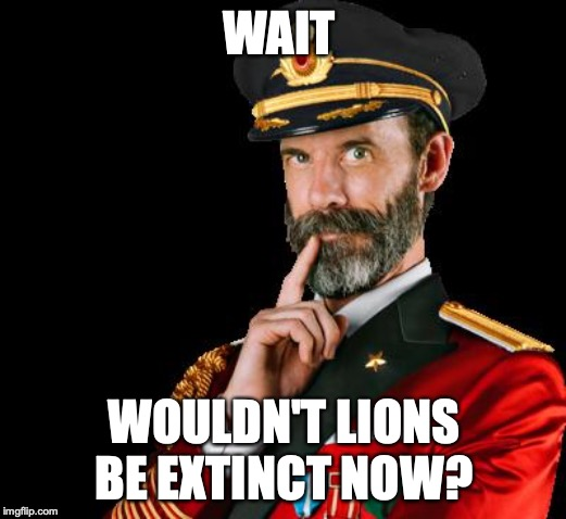 captain obvious | WAIT WOULDN'T LIONS BE EXTINCT NOW? | image tagged in captain obvious | made w/ Imgflip meme maker