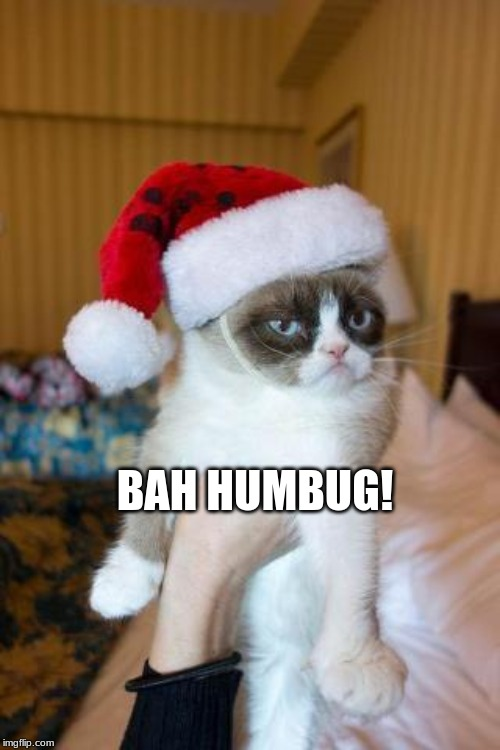 Grumpy Cat Christmas | BAH HUMBUG! | image tagged in memes,grumpy cat christmas,grumpy cat | made w/ Imgflip meme maker