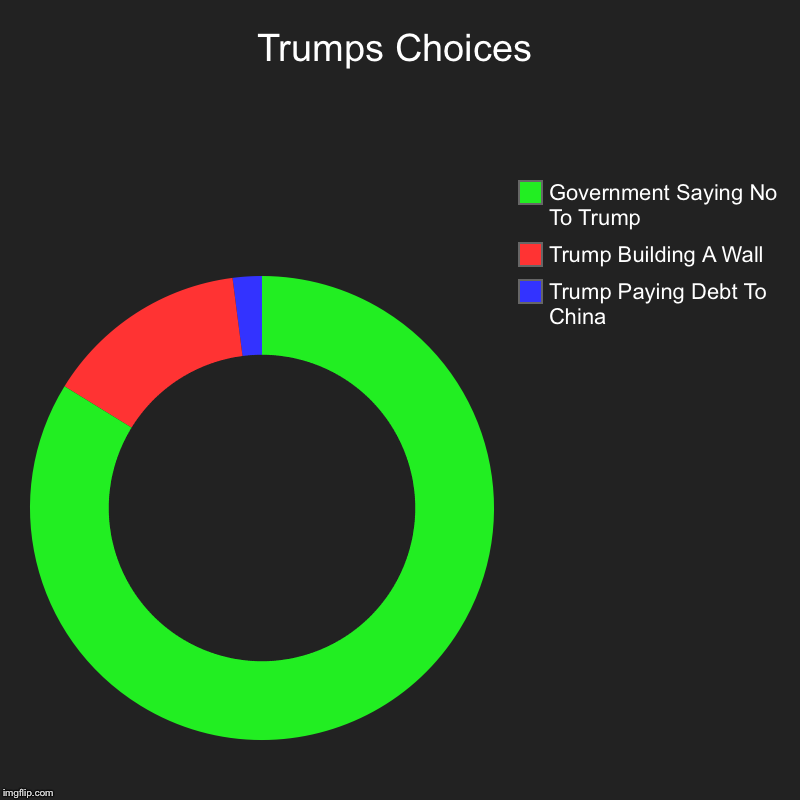 Trumps Choices | Trump Paying Debt To China, Trump Building A Wall, Government Saying No To Trump | image tagged in charts,donut charts | made w/ Imgflip chart maker