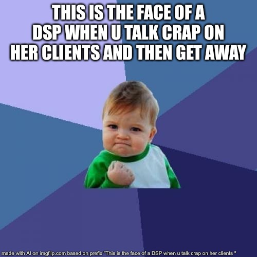 Success Kid Meme | THIS IS THE FACE OF A DSP WHEN U TALK CRAP ON HER CLIENTS AND THEN GET AWAY | image tagged in memes,success kid | made w/ Imgflip meme maker